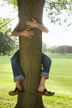 Dendrofilia latente: abbracciare un albero