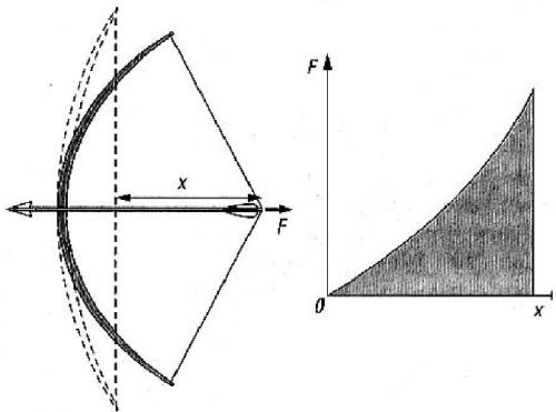 arco grafico forza