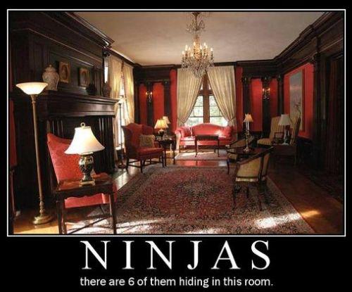 ninja nascosti