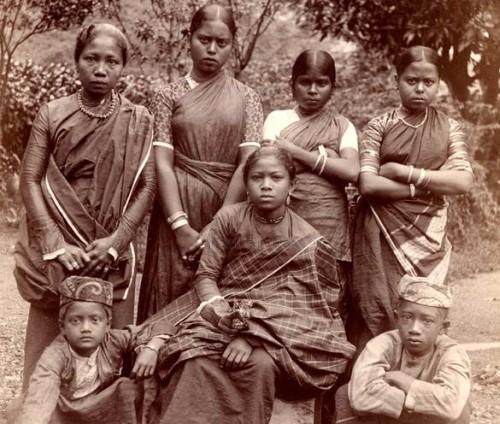 cingalesi
