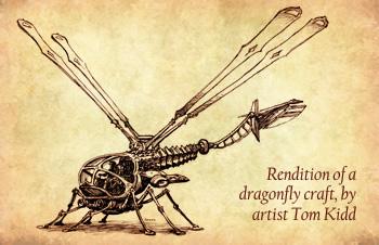 sub-photo-dragonfly