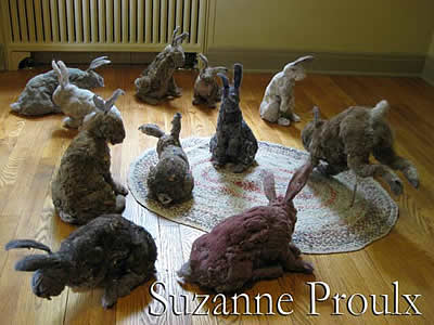 78362_dust-bunnies-web-intro1
