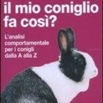 coniglio_fa_cosi