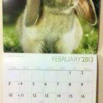 mio_calendario_2013_2