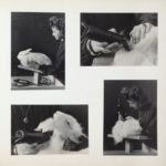 47 - Woman Shearing Angora Rabbit