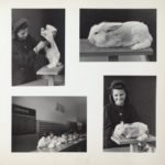 48 - Woman Shearing Angora Rabbit
