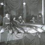 Representatives of the Kuban Cossack Army at the National Fishing Industry Exposition show Inconnu fish sent as gifts to Imperatitsa Alexandra Fyodorovna, Petrograd, 1901