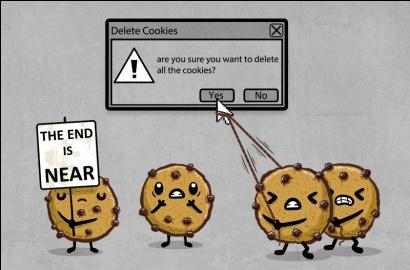 how to delete cookies for certain websites