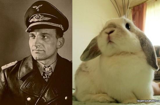 HansUlrichRudel_bunny