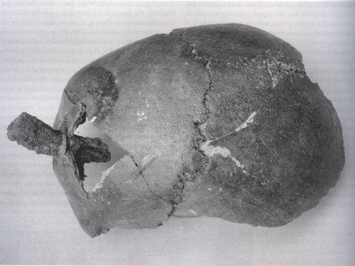 cranio wisby